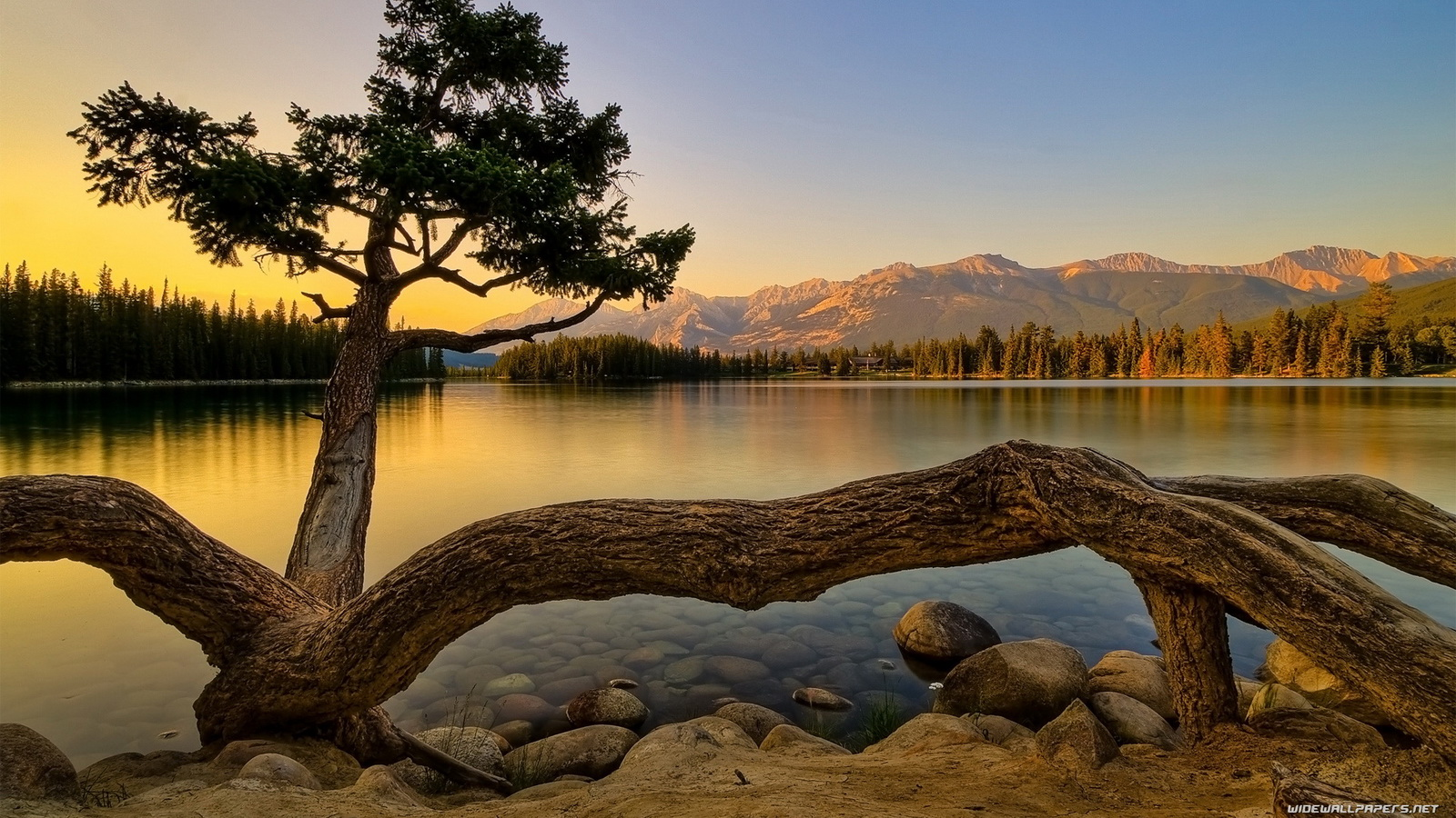 Nature wallpapers hd 24